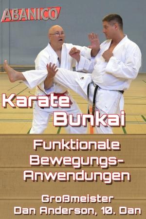 Dan Anderson Bunkai