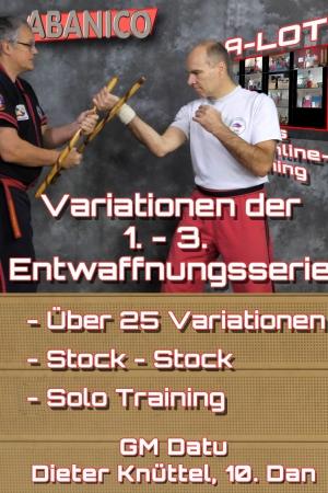 Variationen 1.-3. Entwaffnungsserie
