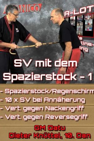 SV mit dem Spazierstock - 1